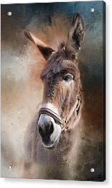 Acrylic Print featuring the photograph  Lil Sassafrass by Robin-Lee Vieira