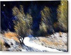 Satisfied Acrylic Print by Robert Shahbazi
