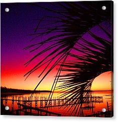 Saturated Sunrise Acrylic Print by Nicole I Hamilton
