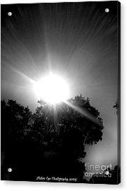 Saturday Sunshine On A Charleston Morning Acrylic Print