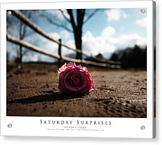 Saturday Surprises Acrylic Print by Steven Tryon