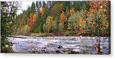 Sauk River Fall Colors Panorama Acrylic Print by Mary Gaines
