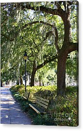Savannah Benches Acrylic Print by Carol Groenen