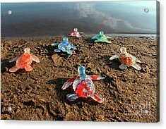 Save Sea Turtles By Purchasing A Print Acrylic Print