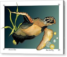 Save The Turtle Acrylic Print by Anne Beverley-Stamps