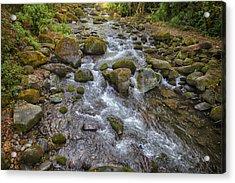 Savegre River - Costa Rica 2 Acrylic Print