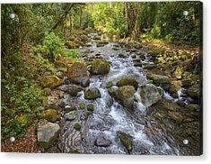 Savegre River - Costa Rica 3 Acrylic Print