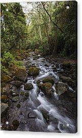 Savegre River - Costa Rica 4 Acrylic Print