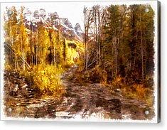 Sawmill Road Acrylic Print