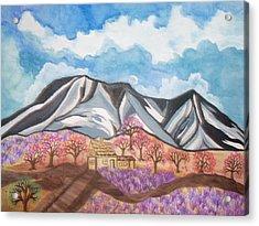 Sawtooth Mountain Farm Acrylic Print by Connie Valasco