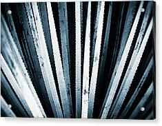 Sawtooth Acrylic Print