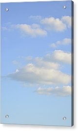 Say Vertical Acrylic Print