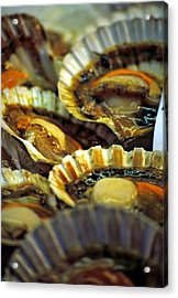 Scallops At Rialto Market In Venice Acrylic Print by Michael Henderson