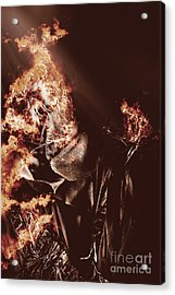Scarecrow Of Shrovetide Acrylic Print by Jorgo Photography - Wall Art Gallery