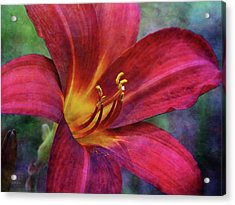 Scarlet And Gold Dust 3716 Idp_2 Acrylic Print