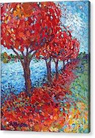 Scarlet Path Acrylic Print