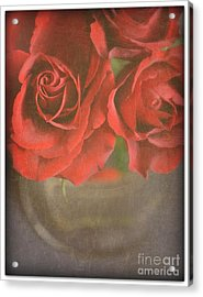 Acrylic Print featuring the photograph Scarlet Roses by Lyn Randle