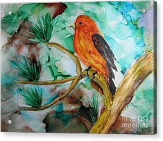 Scarlet Tanager Acrylic Print