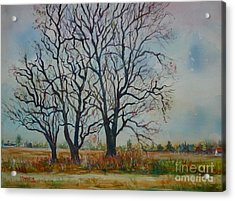 Scary Tree Acrylic Print by Joyce A Guariglia