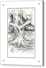 Scary Tree Acrylic Print by Ruth Renshaw