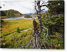 Scenic Alpine Lake And Meadow Acrylic Print by George Oze