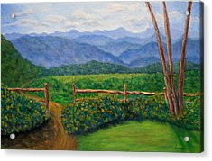 Scenic Overlook Acrylic Print by Sandy Hemmer