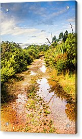 Scenic Roads Less Travelled Acrylic Print by Jorgo Photography - Wall Art Gallery