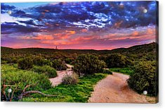 Acrylic Print featuring the photograph Scenic Trailhead by Anthony Citro