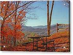 Scenic View Acrylic Print by Geraldine DeBoer