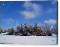 Scenic Winter Acrylic Print by Margie Avellino