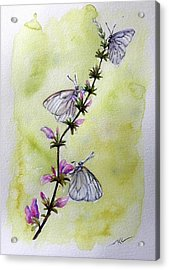 Scent Of Spring Acrylic Print