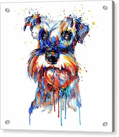 Acrylic Print featuring the mixed media Schnauzer Head by Marian Voicu