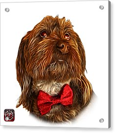 Acrylic Print featuring the painting Schnoodle Pop Art - 3687 by James Ahn