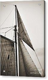 Schooner Pride Tall Ship Yankee Sail Charleston Sc Acrylic Print by Dustin K Ryan