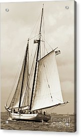 Schooner Sailboat Spirit Of South Carolina Sailing Acrylic Print by Dustin K Ryan
