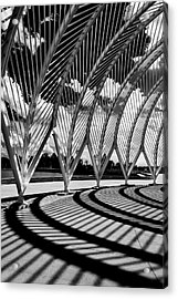 Acrylic Print featuring the photograph Scintilla Of Shadows by Mike Lang