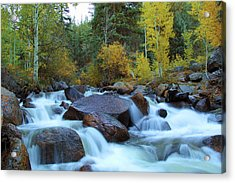 Acrylic Print featuring the photograph Scott Gomer Creek At Guanella Pass by Marie Leslie