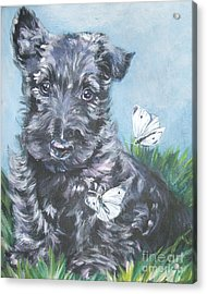 Scottish Terrier With Butterflies Acrylic Print by Lee Ann Shepard