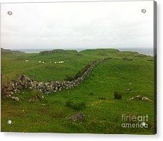 Scottish Wall Acrylic Print