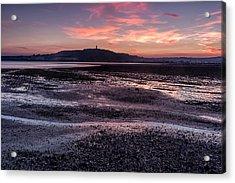 Scrabo Above Strangford Lough Acrylic Print
