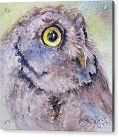Acrylic Print featuring the painting Screech Owl by Bonnie Rinier