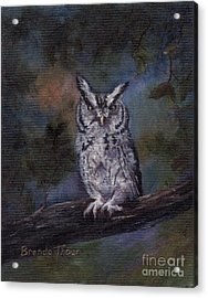 Acrylic Print featuring the painting Screech Owl by Brenda Thour