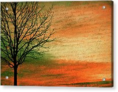 Scribble At Sunset Acrylic Print