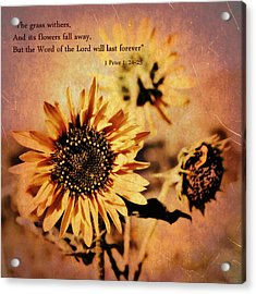 Acrylic Print featuring the photograph Scripture - 1 Peter One 24-25 by Glenn McCarthy Art and Photography