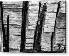 Sculpted Log Acrylic Print