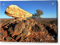 Acrylic Print featuring the photograph Sculpture Park Broken Hill by Bill Robinson