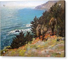 Sea And Pines Near Ragged Point, California Acrylic Print by Peter Salwen