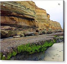 Sea Cliff Acrylic Print