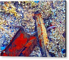 Sea. Corals. Rusty Iron And Little Moray.  Acrylic Print