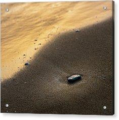Sea Gold Acrylic Print